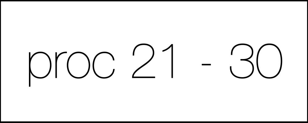 proc21-30
